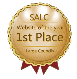 SALC Website of the Year 2015 - Large Councils